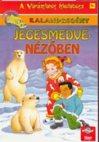 Judith Stamper - Jegesmedve-nézőben