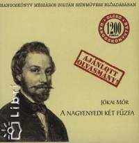 Jókai Mór - Mészáros Zoltán - A nagyenyedi két fűzfa