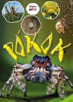 Krajnik Bíró Sára - Pókok