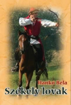 Hankó Béla - Székely lovak