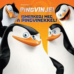 - A Madagaszkár pingvinjei - Ismerkedj meg a pingvinekkel!