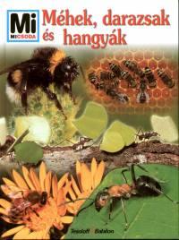 Sabine Steghaus-Kovac - Méhek, darazsak és hangyák