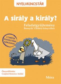 Csájiné Knézics Anikó  (Összeáll.) - A  sirály a király?