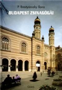 Ilona P. Brestyánszky - Budapest zsinagógái