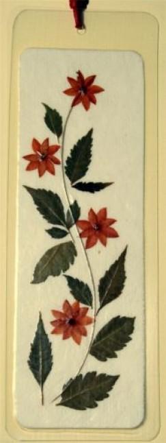 - Könyvjelző préselt virágból - orange star