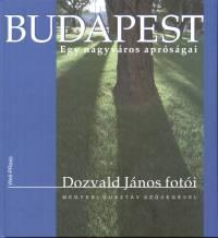 Dozvald János - Megyesi Gusztáv - Budapest - Egy nagyváros apróságai