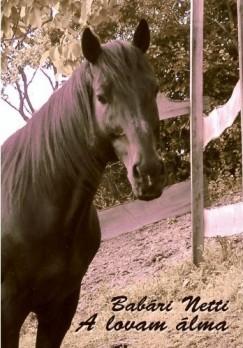 Babári Netti - A lovam álma