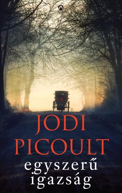 Jodi Picoult - Egyszerű igazság