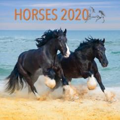 - Horses Lemeznaptár - 2020