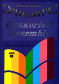 Agárdi Gábor - Gyakorlati Assembly