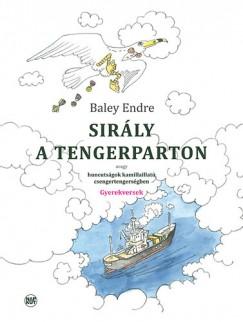 Baley Endre - Sirály a tengerparton - Gyermekversek