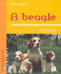 Pallós Andrea - A beagle