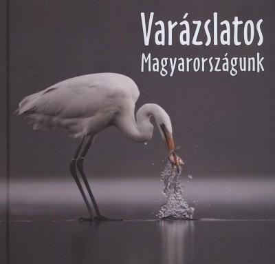 VARÁZSLATOS MAGYARORSZÁGUNK 2011