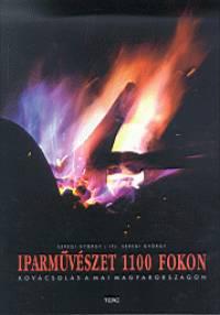 Ifj. Seregi György - Dr. Seregi György - Iparművészet 1100 fokon