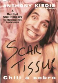 Anthony Kiedis - Larry Sloman - Scar Tissue - Chili a sebre