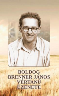 Székely János - Boldog Brenner János vértanú üzenete