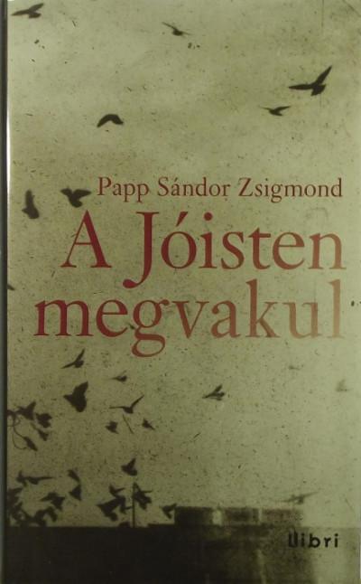 Papp Sándor Zsigmond - A Jóisten megvakul