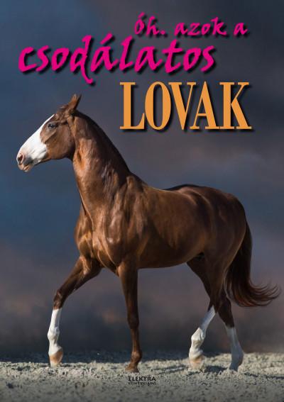 Bernáth István - Óh. azok a csodálatos lovak