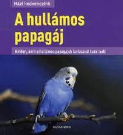 - A hullámos papagáj