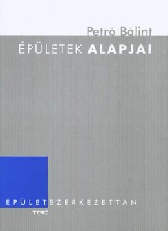 Petró Bálint - Épületek alapjai