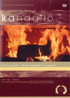 Hendrik Timm Hogerzeil - Kandalló (Blu-ray)